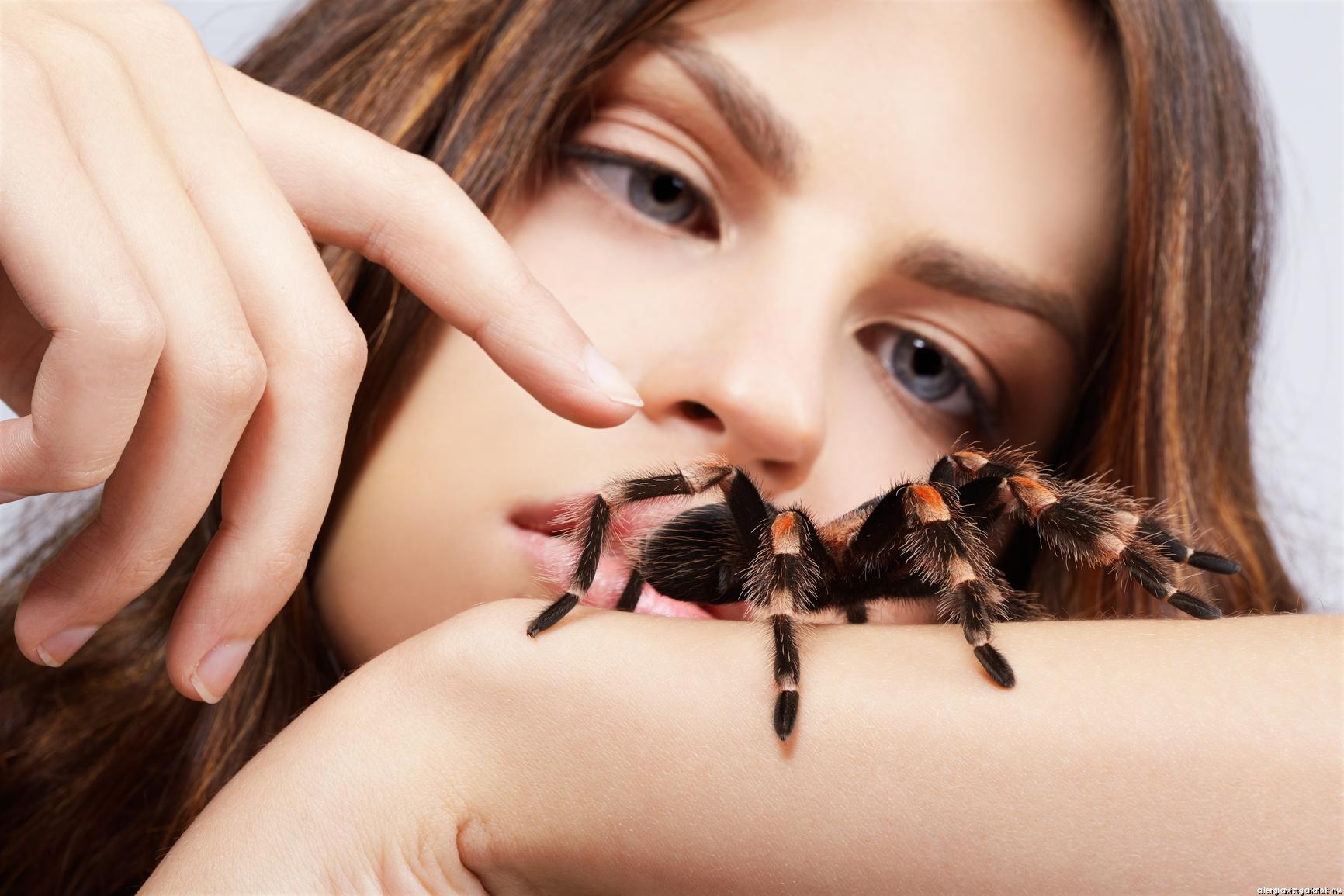 A rovarcsípés kezelése: küzdelem a rovarméreg allergia ellen